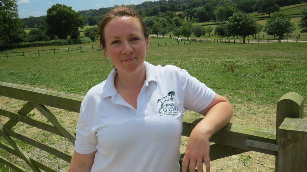 Equine Physiotherapist
